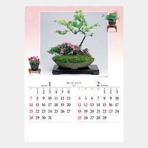 野の花・山の花(山野草盆栽集)