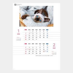 キャッツカレンダー