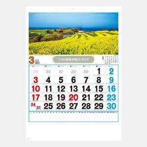 観光数字月表