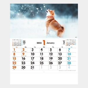 メール便 ペットカレンダー
