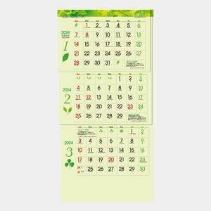 グリーン3ヶ月eco S(上から順)